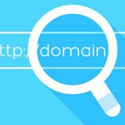 whatis-domain