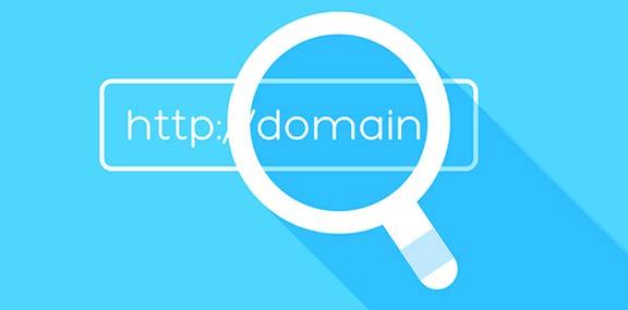 whatis-domain